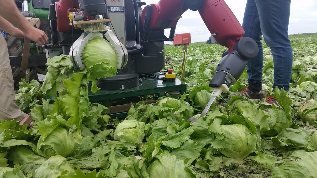 Vege-bot, from the University of Cambridge